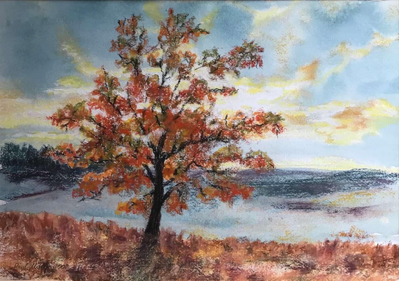 Herbst am Braminsee